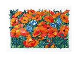 Poppies  1998