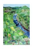 River Agung  Bali  1996