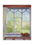 Window in Spring  1992