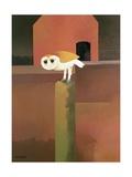 The Barn Owl  1989