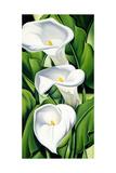 Lilies  2002