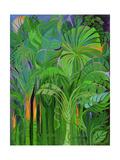 Rain Forest  Malaysia  1990