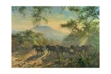 Elephant  Kilimanjaro  1995