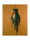 Pheasants  1984