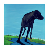 Joe's Black Dog (New View)  2000