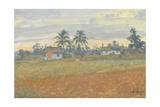 Cuban Landscape  2010