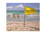 Yellow Flag  Barbados  2010