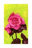 Bright Rose  1980s