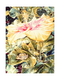Tree Frog and White  Yellow and Pink Hibiscus  1989