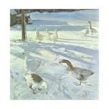 Snowfeeders  1999