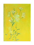 Lillies on Yellow