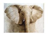 Elephant  2004