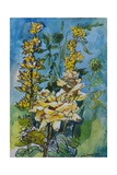 Yellow Rose and Loosestrife  1983