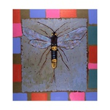 Giant Horntail  1996