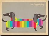 Mod Rainbow Dogs