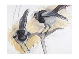 Two Magpies  2008