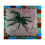 Spider  1996