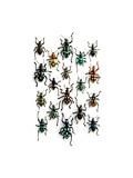 Walking Weevils