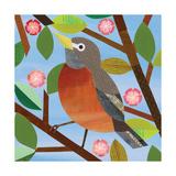 American Birds - Robin