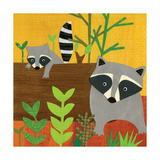 Forest Babies - Raccoon Family