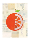 Fruit Collage - Orange
