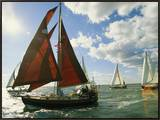 Red-Sailed Sailboat and Others in a Race on the Chesapeake Bay