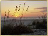 Sunset  Gulf Coast  Longboat Key  Anna Maria Island  Beach  Florida  USA