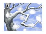 Frost Fairies - Jack & Jill