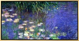 Waterlilies (Les Nympheas)  Study of the Morning Water