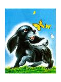 Dog and Butterflies - Jack & Jill