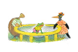 Ted  Ed  Caroll and the Trampoline - Turtle