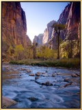 Utah  Zion National Park  the Narrows of North Fork Virgin River  USA