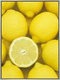 Lemons (Citrus Limon)  Eureka Variety