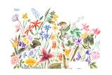 May Flowers - Jack & Jill