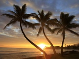 Sunrise  Windward Oahu  Hawaii