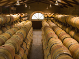 Oak Barrels in Wine Cellar at Groth Winery in Napa Valley  California  USA