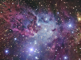 Fox Fur Nebula