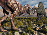 A Confrontation Between a T Rex and a Spinosaurus Dinosaur