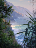 Island Experience  Kauai