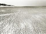 Baltrum Beach  no 6