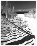 Shadowed Pathway