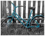 Teal Bike I