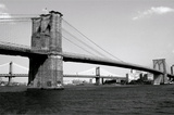 Brooklyn Bridge and Manhattan Bridge  Day