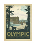 Olympic National Park, Washington Reproduction d'art par Anderson Design Group