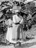 Peasant Woman  Jamaica  1908-09