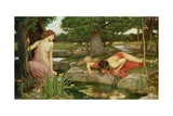 Echo and Narcissus  1903