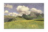 A Field of Marigolds  Lower Alps  1902