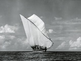 An Arab Dhow  Old Mombasa Harbour  Kenya  5th April 1952