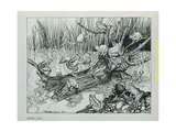 King Log  Illustration from 'Aesop's Fables'  Published by Heinemann  1912