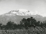 Mount Kilimanjaro  Tanzania  1920